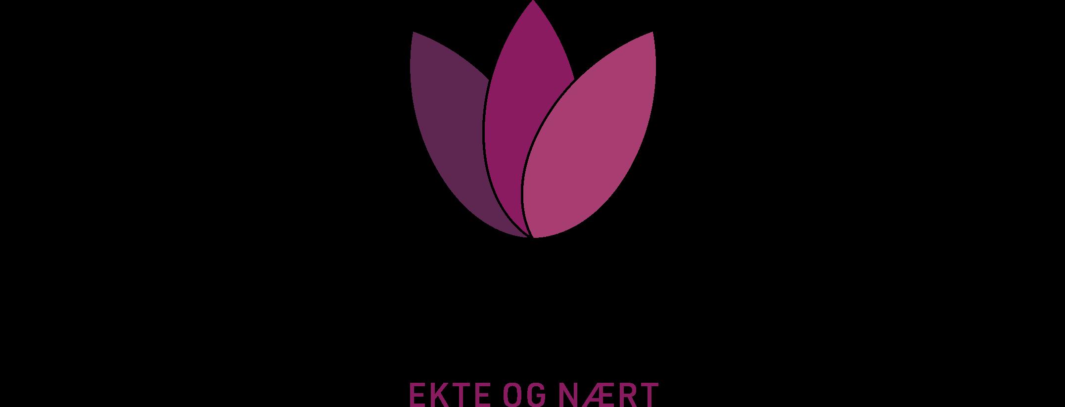 DLM_logo_RGB-3